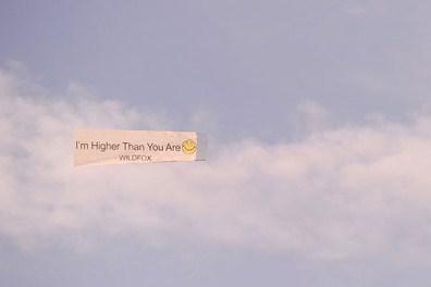 Wildfox Coachella Banner