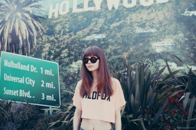 Wildfox Sun 2012 Lookbook-5
