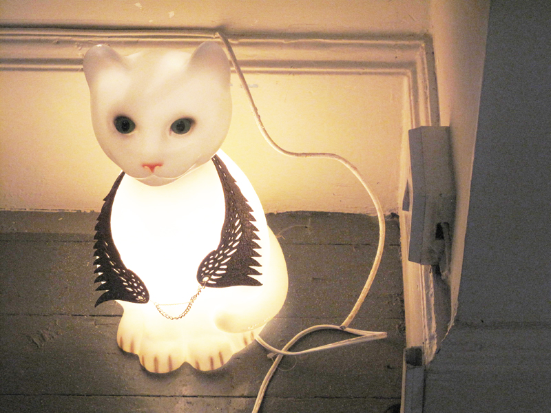 Nicole Levy PR press day LNA cute kitty light
