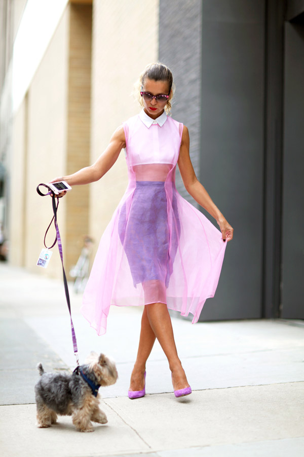 Natalie Joos with pooch and colour coordinated organza over a cropped top