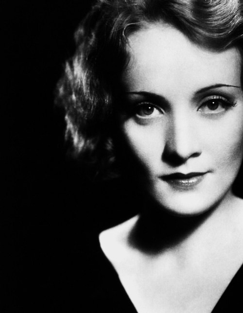 eyebrows marlene dietrich 2