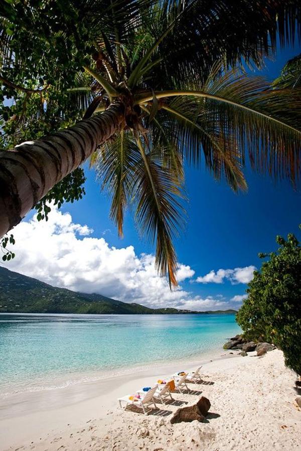 Paradise1
